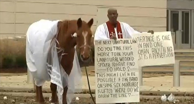 SC-pastor-protests-marriage-equality-by-dressing-horse-in-a-wedding-dress-WJTV-TV-800x430